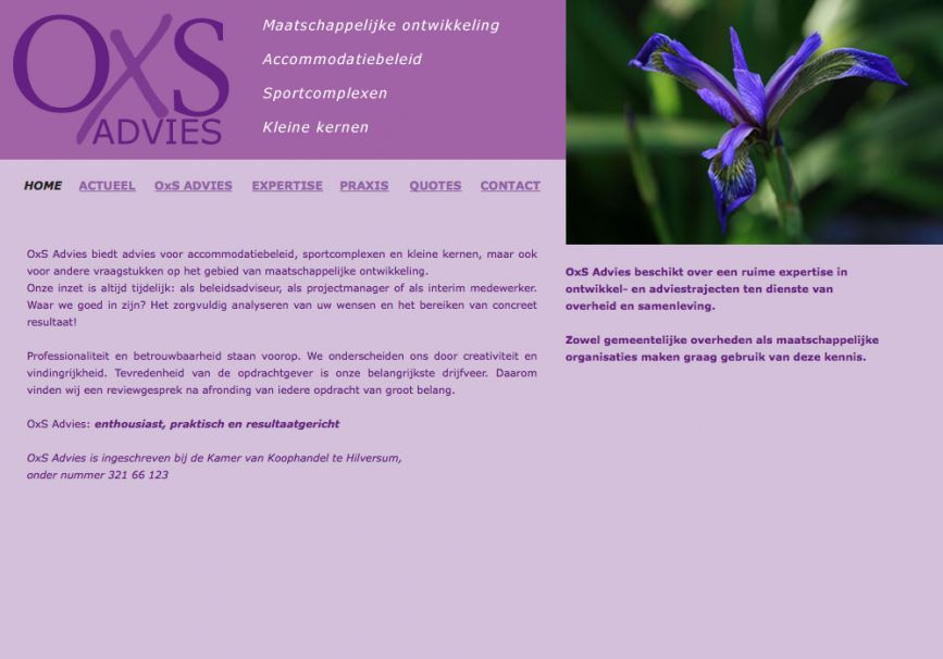 Website OXS Advies