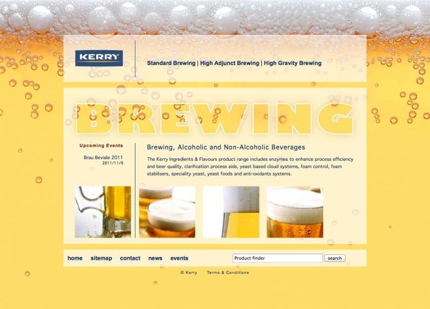 brewing-solutions.com website